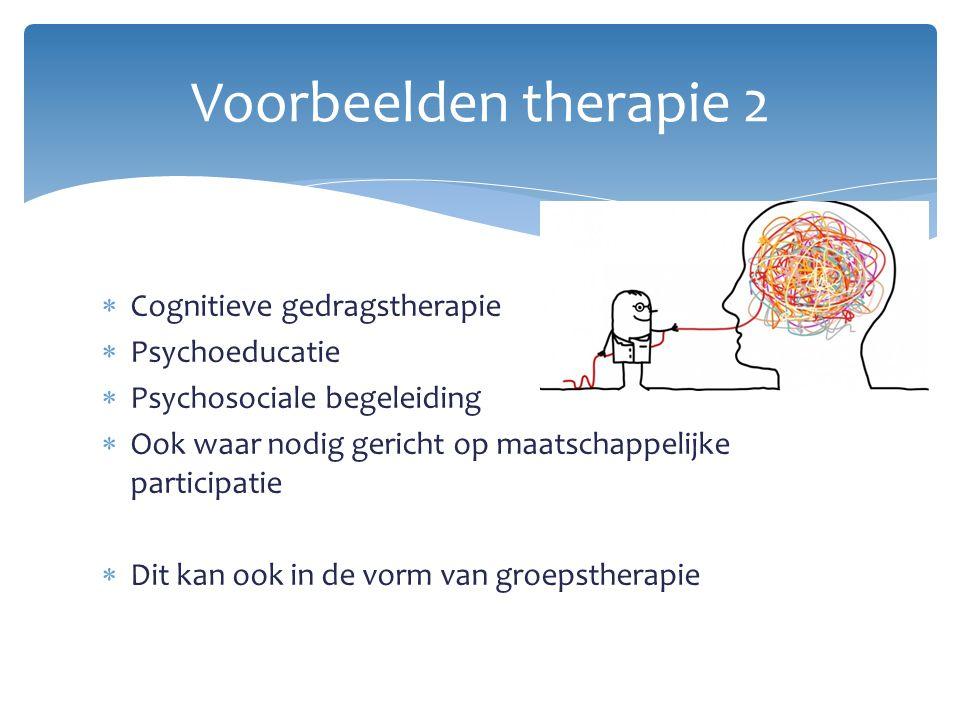  Cognitieve gedragstherapie  Psychoeducatie  Psychosociale begeleiding  Ook waar nodig gericht op maatschappelijke participatie  Dit kan ook in d