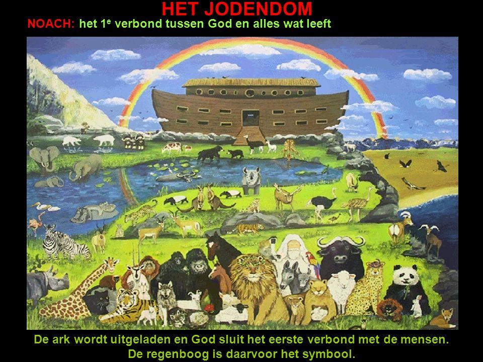 HET JODENDOM NOACH: het 1 e verbond tussen God en alles wat leeft De ark wordt uitgeladen en God sluit het eerste verbond met de mensen. De regenboog
