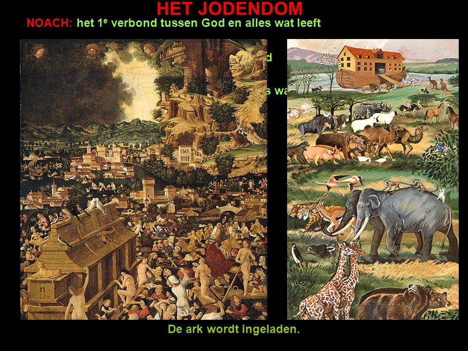 HET JODENDOM NOACH: het 1 e verbond tussen God en alles wat leeft ADAM EN EVA: de schepping van de wereld Leerdoel Jodendom: je kunt de basiskenmerken