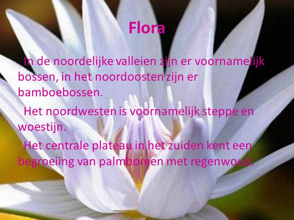 Flora In de noordelijke valleien zijn er voornamelijk bossen, in het noordoosten zijn er bamboebossen. Het noordwesten is voornamelijk steppe en woest
