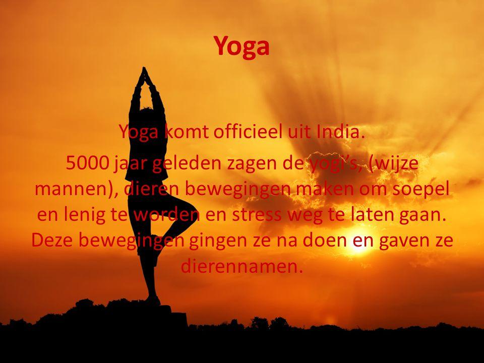 Yoga Yoga komt officieel uit India. 5000 jaar geleden zagen de yogi's, (wijze mannen), dieren bewegingen maken om soepel en lenig te worden en stress