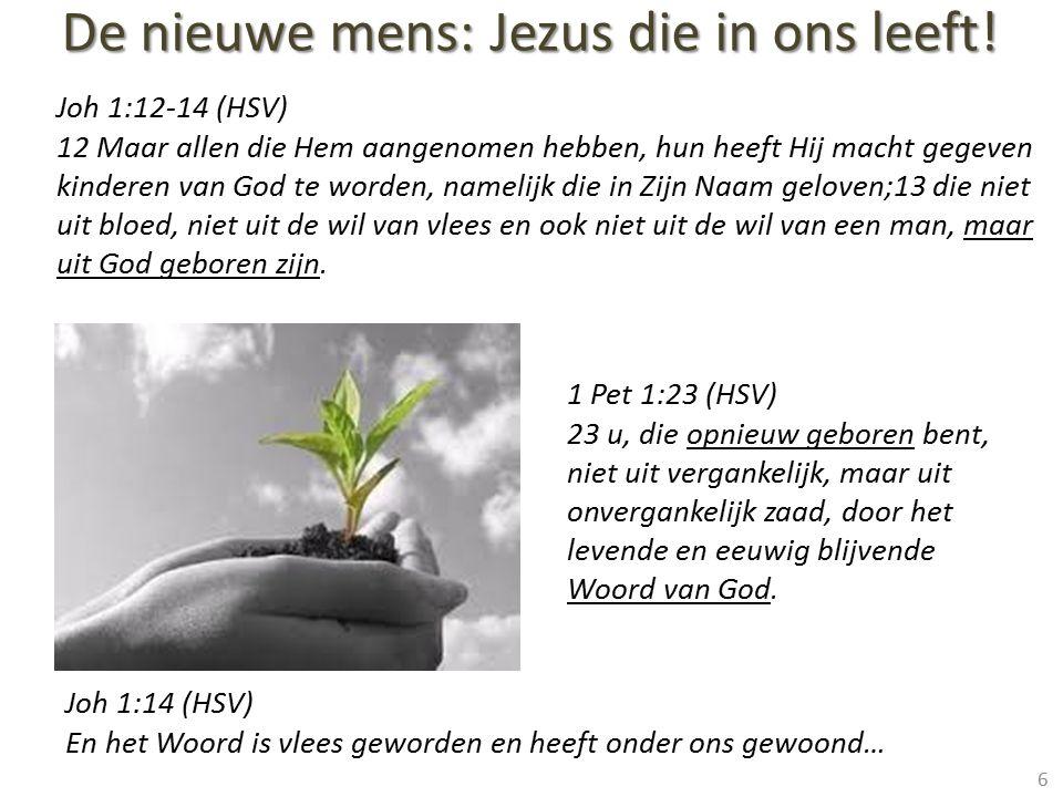 Joh 1:12-14 (HSV) 12 Maar allen die Hem aangenomen hebben, hun heeft Hij macht gegeven kinderen van God te worden, namelijk die in Zijn Naam geloven;1
