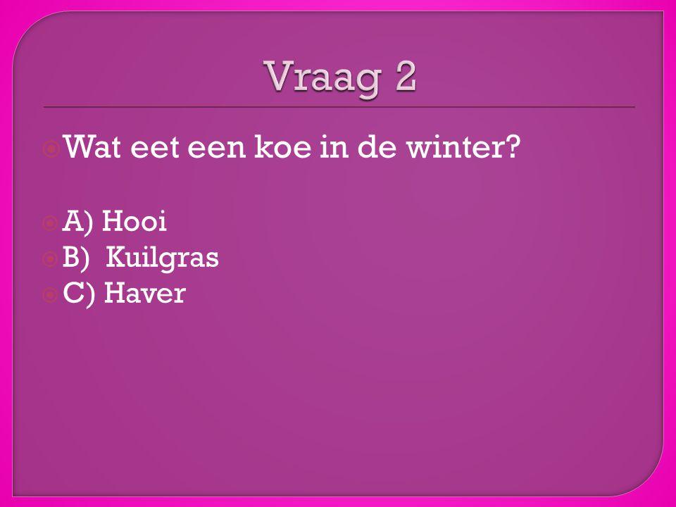  Wat eet een koe in de winter?  A) Hooi  B) Kuilgras  C) Haver