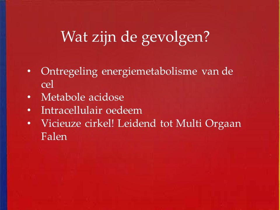Wat zijn de gevolgen? Ontregeling energiemetabolisme van de cel Metabole acidose Intracellulair oedeem Vicieuze cirkel! Leidend tot Multi Orgaan Falen