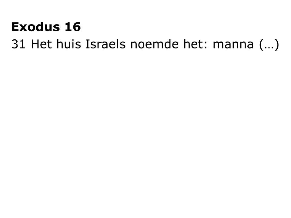Exodus 16 31 Het huis Israels noemde het: manna (…)