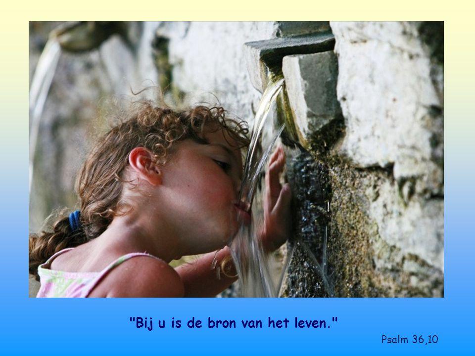 Bij u is de bron van het leven. Psalm 36,10