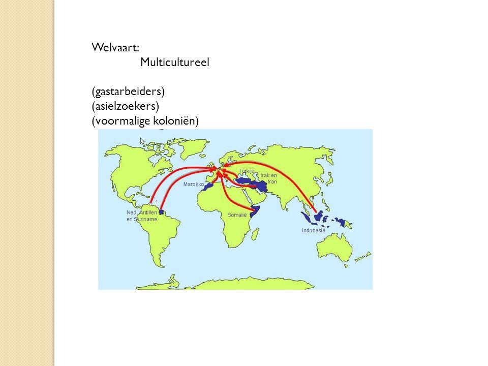 Welvaart: Multicultureel (gastarbeiders) (asielzoekers) (voormalige koloniën)