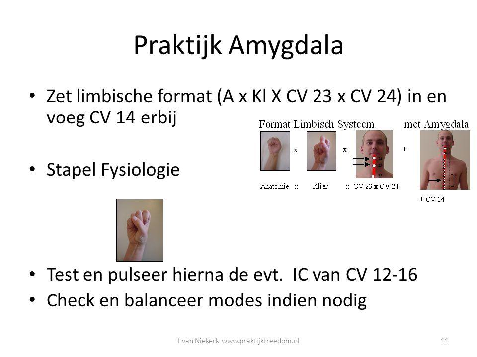 Praktijk Amygdala Zet limbische format (A x Kl X CV 23 x CV 24) in en voeg CV 14 erbij Stapel Fysiologie Test en pulseer hierna de evt. IC van CV 12-1