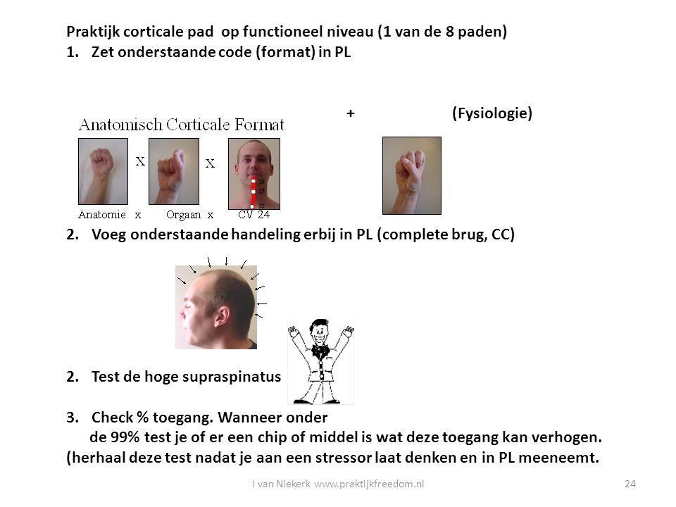 I van Niekerk www.praktijkfreedom.nl24 Praktijk corticale pad op functioneel niveau (1 van de 8 paden) 1.Zet onderstaande code (format) in PL + (Fysio