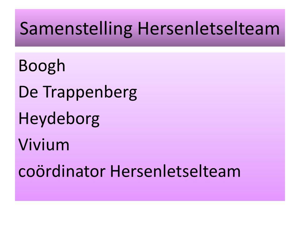 Samenstelling Hersenletselteam Boogh De Trappenberg Heydeborg Vivium coördinator Hersenletselteam
