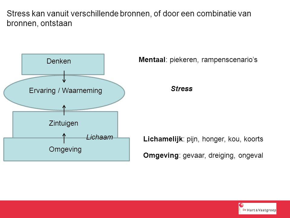Stress kan vanuit verschillende bronnen, of door een combinatie van bronnen, ontstaan Omgeving Zintuigen Denken Ervaring / Waarneming Lichaam Lichamel
