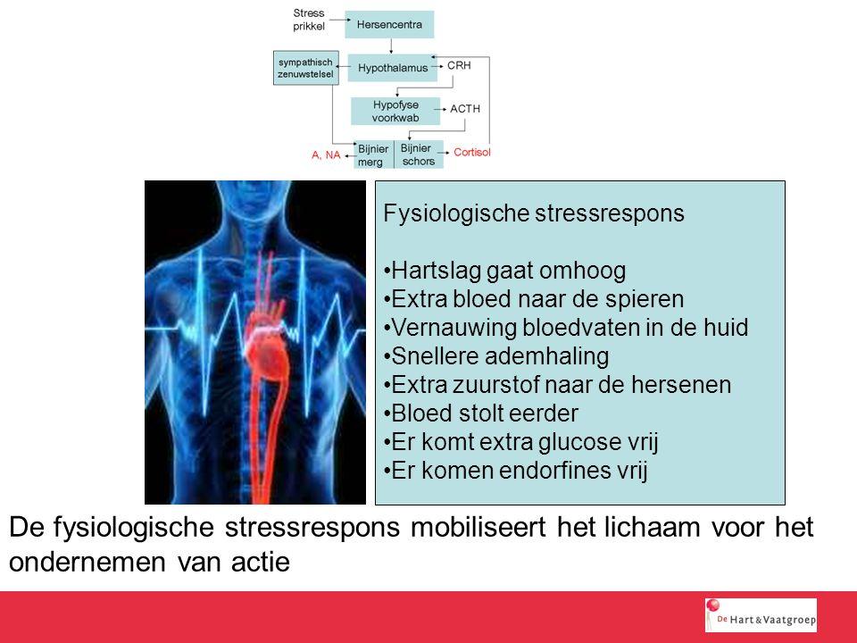 De fysiologische stressrespons mobiliseert het lichaam voor het ondernemen van actie Fysiologische stressrespons Hartslag gaat omhoog Extra bloed naar