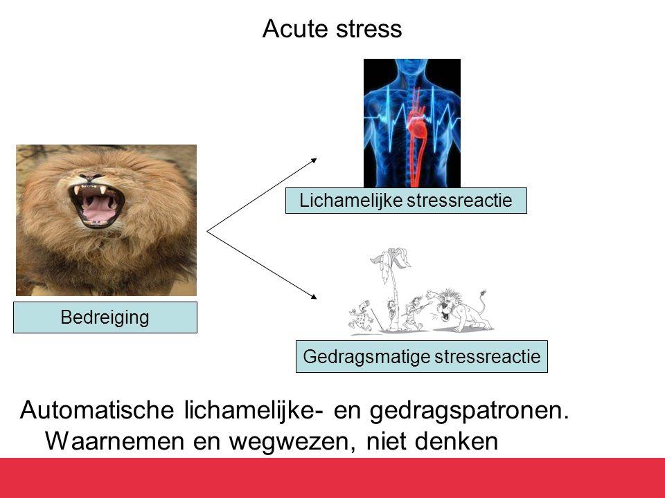 Acute stress Automatische lichamelijke- en gedragspatronen. Waarnemen en wegwezen, niet denken Bedreiging Lichamelijke stressreactie Gedragsmatige str
