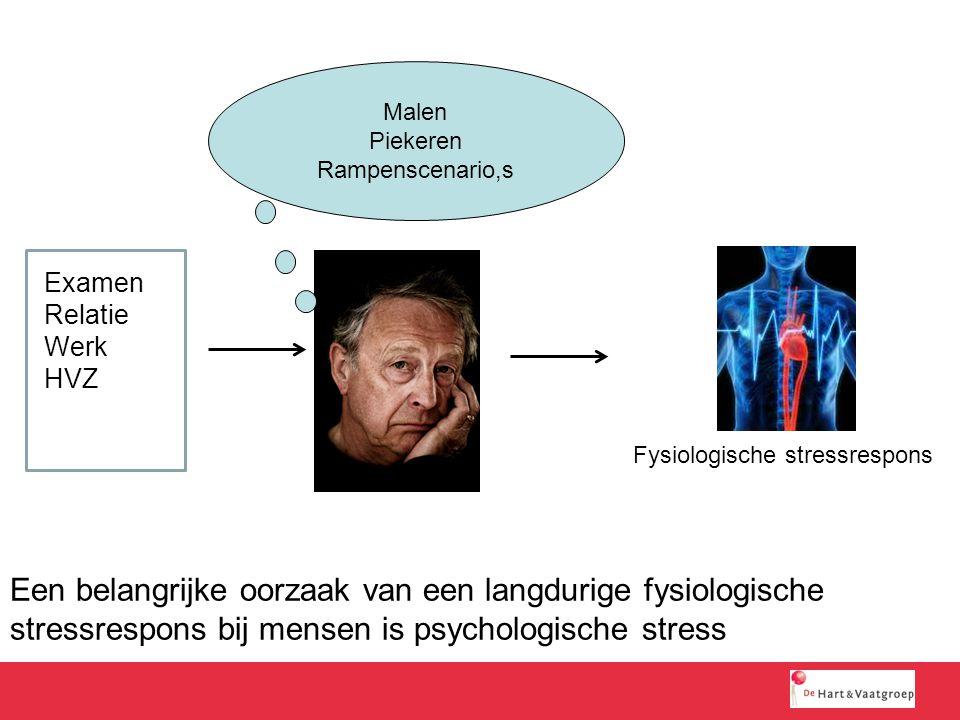 Een belangrijke oorzaak van een langdurige fysiologische stressrespons bij mensen is psychologische stress Malen Piekeren Rampenscenario,s Examen Rela