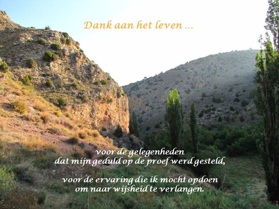 Dank aan het leven … voor alle geweende tranen die van spijt en verdriet getuigen en de ziel reinigen.