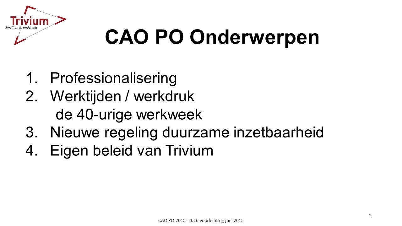 CAO PO Onderwerpen 1.Professionalisering 2.Werktijden / werkdruk de 40-urige werkweek 3.Nieuwe regeling duurzame inzetbaarheid 4.Eigen beleid van Triv