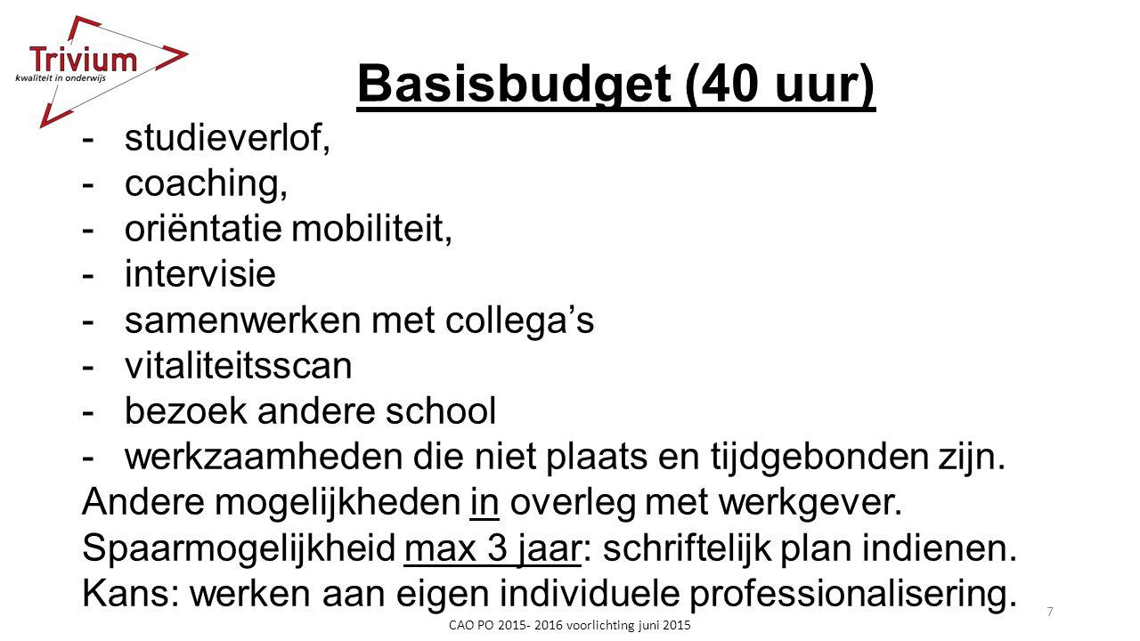 Basisbudget (40 uur) -studieverlof, -coaching, -oriëntatie mobiliteit, -intervisie -samenwerken met collega's -vitaliteitsscan -bezoek andere school -