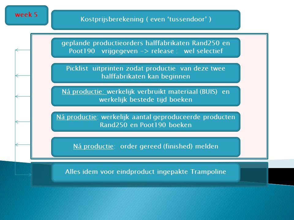 Asssemblage TRAMPOLINE Productie RAND EN POOT Kostprijsberekening ( even 'tussendoor' ) Ná productie: werkelijk verbruikt materiaal (BUIS) en werkelij