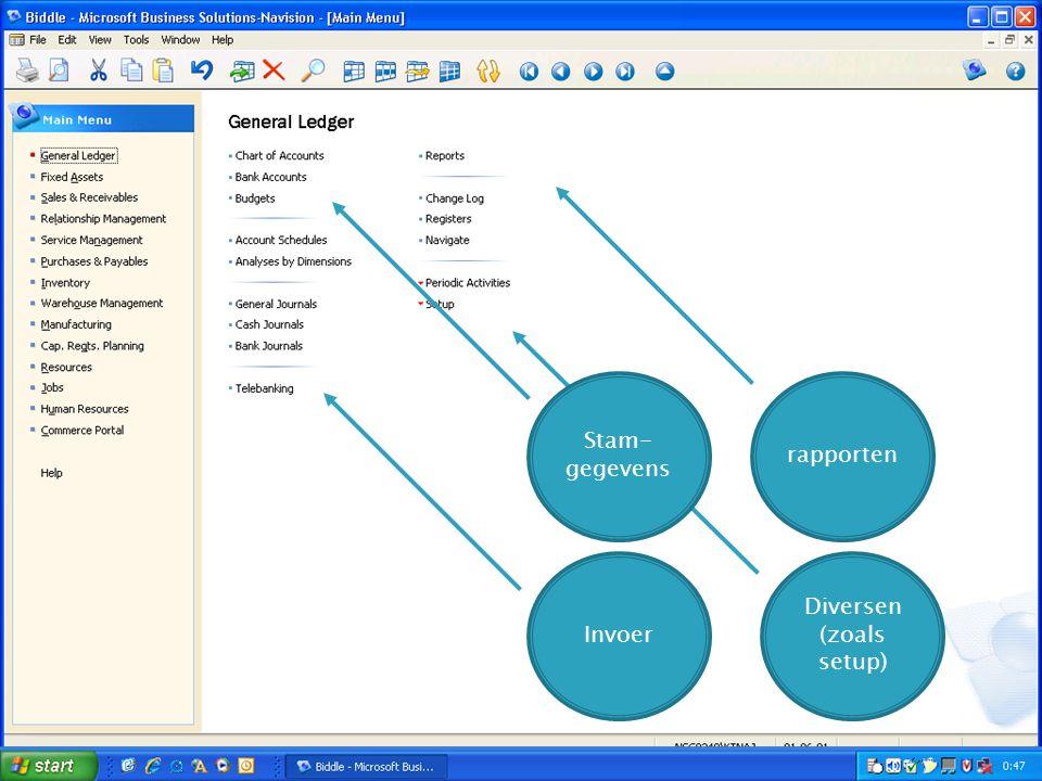 Invoer rapporten Diversen (zoals setup) Stam- gegevens