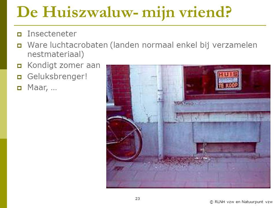 23 © RLNH vzw en Natuurpunt vzw De Huiszwaluw- mijn vriend.