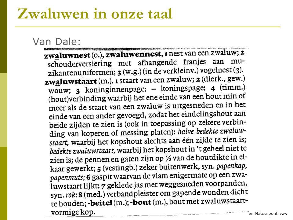 3 © RLNH vzw en Natuurpunt vzw Zwaluwen in onze taal Van Dale: