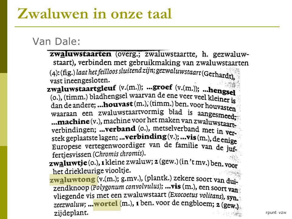 4 © RLNH vzw en Natuurpunt vzw Zwaluwen in onze taal Van Dale: