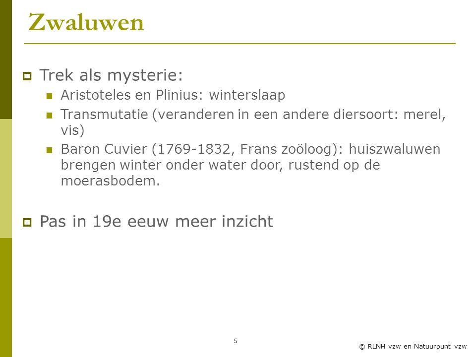 5 © RLNH vzw en Natuurpunt vzw Zwaluwen  Trek als mysterie: Aristoteles en Plinius: winterslaap Transmutatie (veranderen in een andere diersoort: merel, vis) Baron Cuvier (1769-1832, Frans zoöloog): huiszwaluwen brengen winter onder water door, rustend op de moerasbodem.