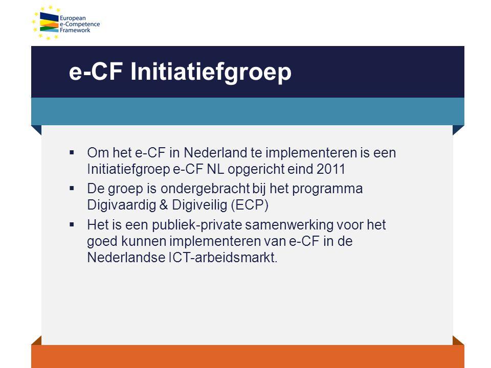e-CF Initiatiefgroep  Om het e-CF in Nederland te implementeren is een Initiatiefgroep e-CF NL opgericht eind 2011  De groep is ondergebracht bij het programma Digivaardig & Digiveilig (ECP)  Het is een publiek-private samenwerking voor het goed kunnen implementeren van e-CF in de Nederlandse ICT-arbeidsmarkt.