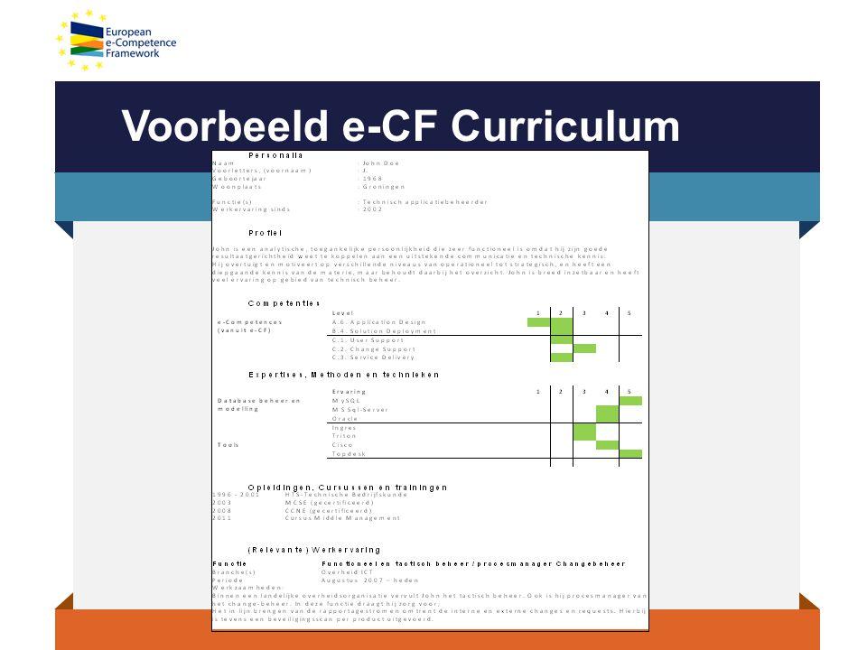 Voorbeeld e-CF Curriculum