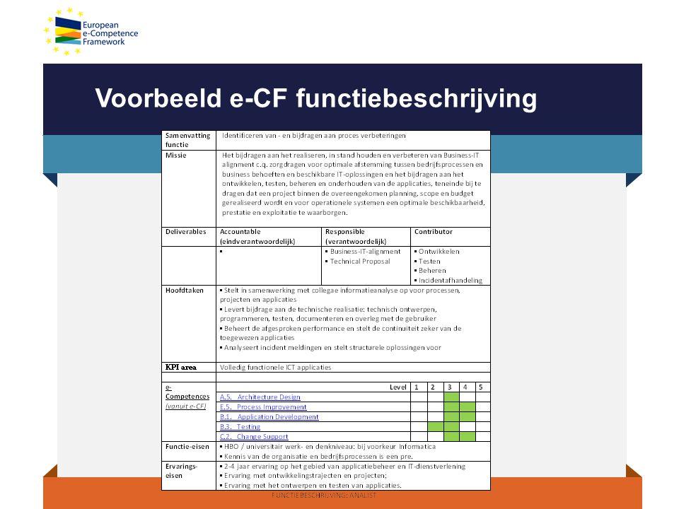 Voorbeeld e-CF functiebeschrijving