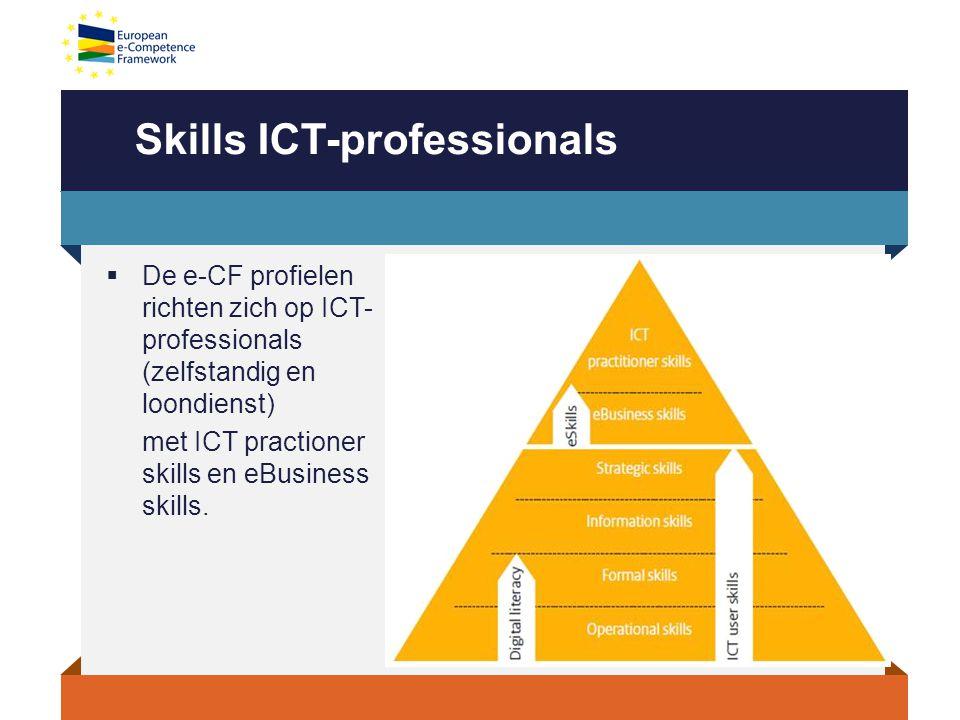 Skills ICT-professionals  De e-CF profielen richten zich op ICT- professionals (zelfstandig en loondienst) met ICT practioner skills en eBusiness skills.