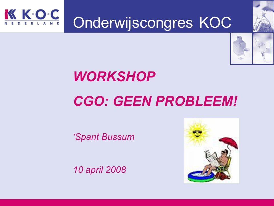 Onderwijscongres KOC WORKSHOP CGO: GEEN PROBLEEM! 'Spant Bussum 10 april 2008