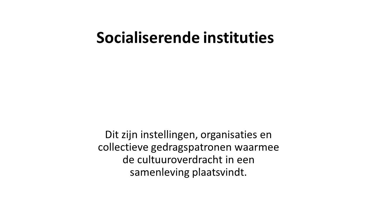 Socialiserende instituties Dit zijn instellingen, organisaties en collectieve gedragspatronen waarmee de cultuuroverdracht in een samenleving plaatsvindt.