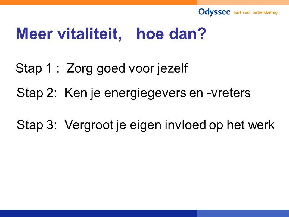 Meer vitaliteit, hoe dan? Stap 1 : Zorg goed voor jezelf Stap 2: Ken je energiegevers en -vreters Stap 3: Vergroot je eigen invloed op het werk
