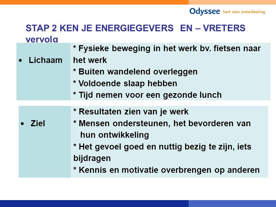 STAP 2 KEN JE ENERGIEGEVERS EN – VRETERS vervolg  Lichaam * Fysieke beweging in het werk bv. fietsen naar het werk * Buiten wandelend overleggen * Vo