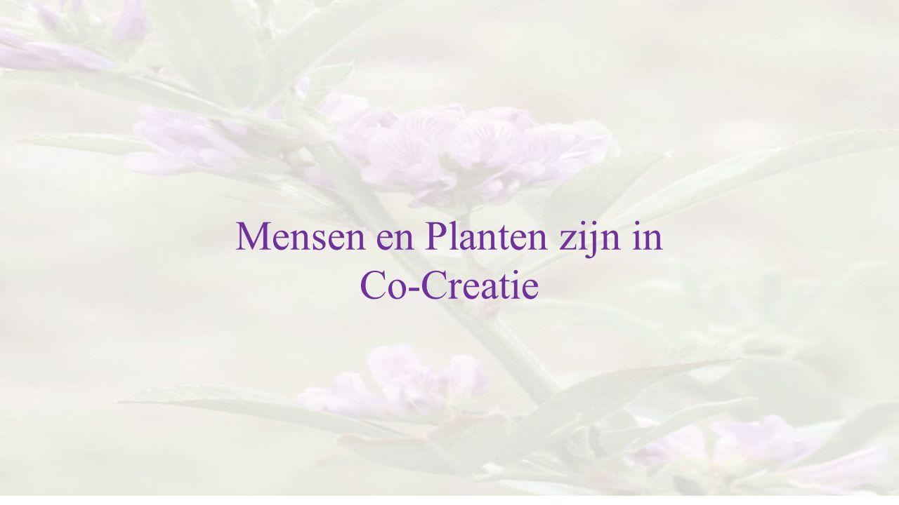 Mensen en Planten zijn in Co-Creatie