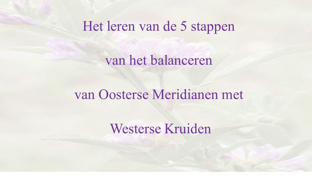 Het leren van de 5 stappen van het balanceren van Oosterse Meridianen met Westerse Kruiden