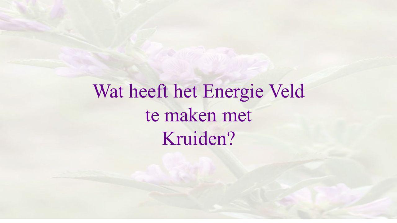 Wat heeft het Energie Veld te maken met Kruiden?