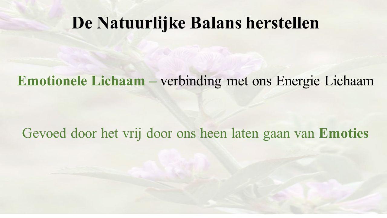 De Natuurlijke Balans herstellen Emotionele Lichaam – verbinding met ons Energie Lichaam Gevoed door het vrij door ons heen laten gaan van Emoties