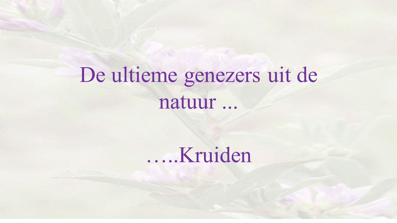 De ultieme genezers uit de natuur... …..Kruiden