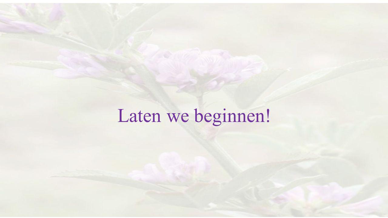 Laten we beginnen!