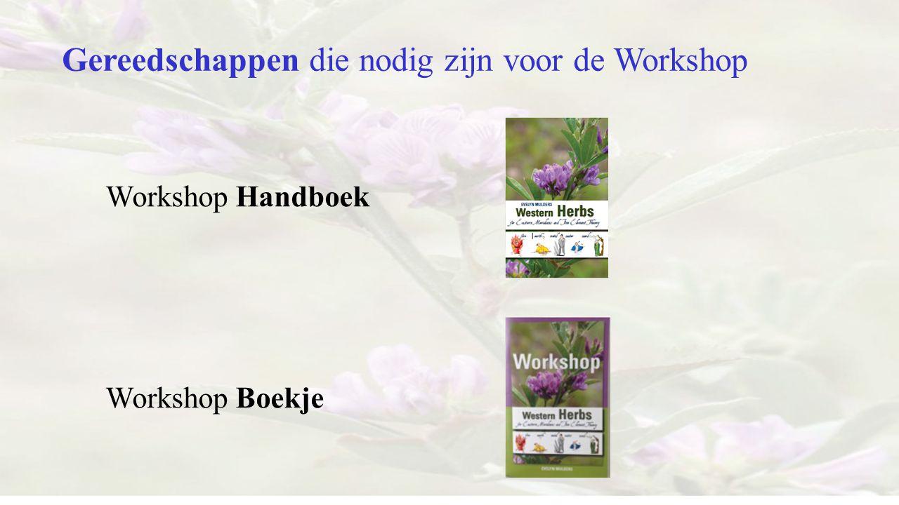 Gereedschappen die nodig zijn voor de Workshop Workshop Handboek Workshop Boekje