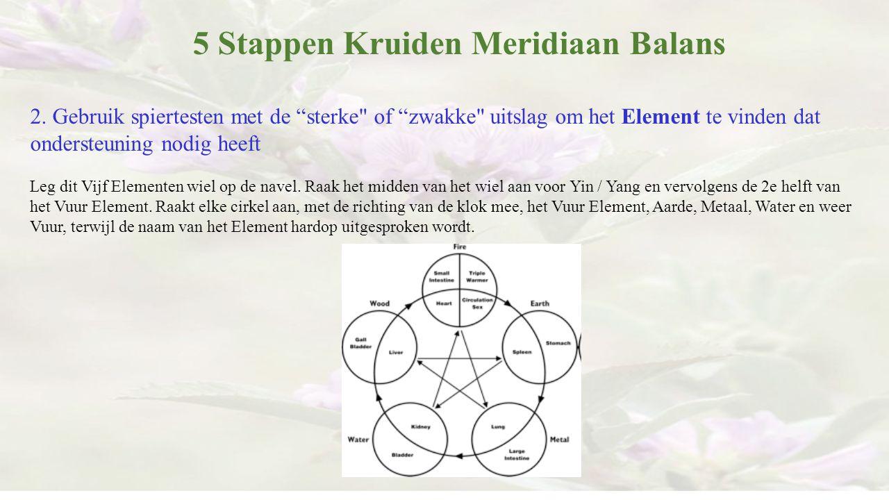 """5 Stappen Kruiden Meridiaan Balans 2. Gebruik spiertesten met de """"sterke"""