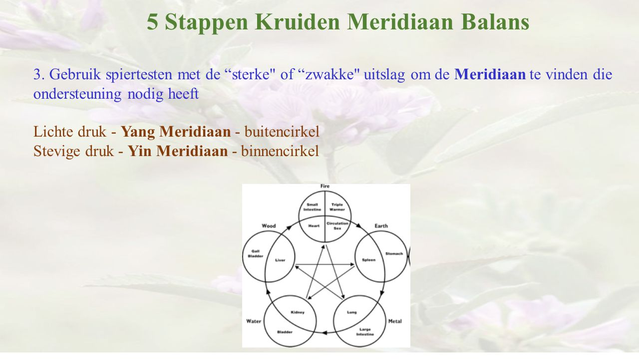 """5 Stappen Kruiden Meridiaan Balans 3. Gebruik spiertesten met de """"sterke"""