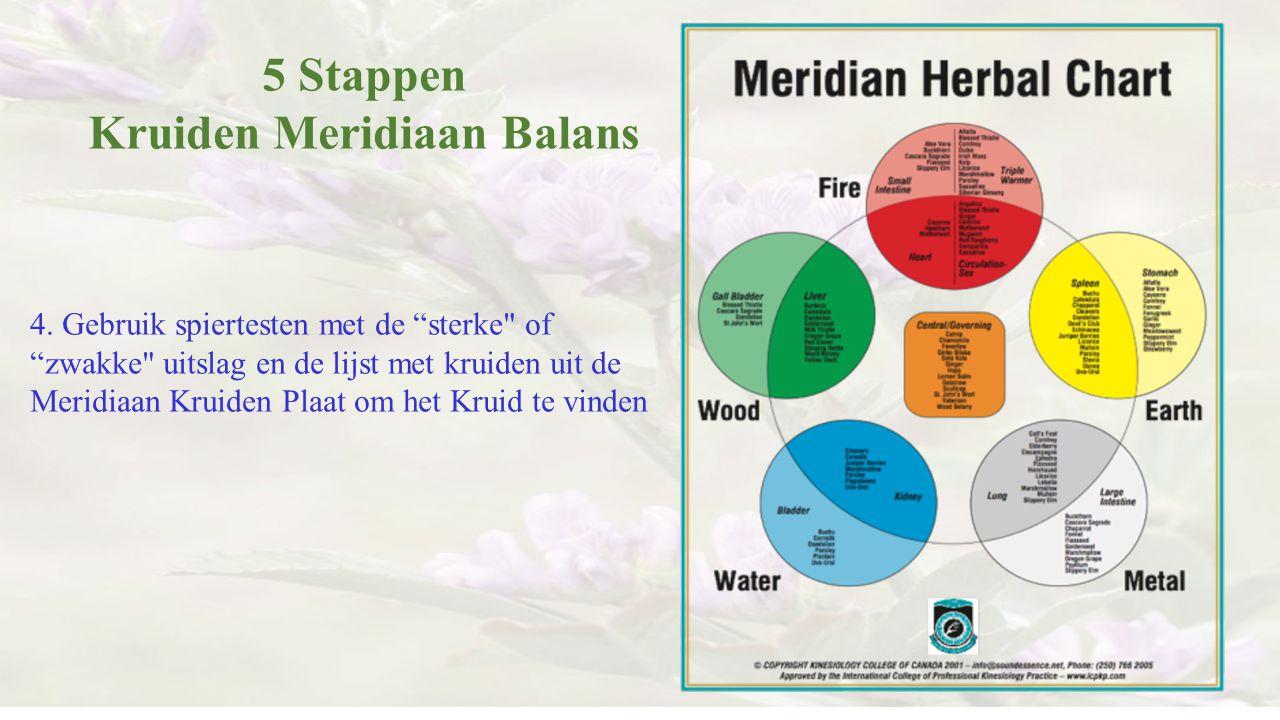 """5 Stappen Kruiden Meridiaan Balans 4. Gebruik spiertesten met de """"sterke"""