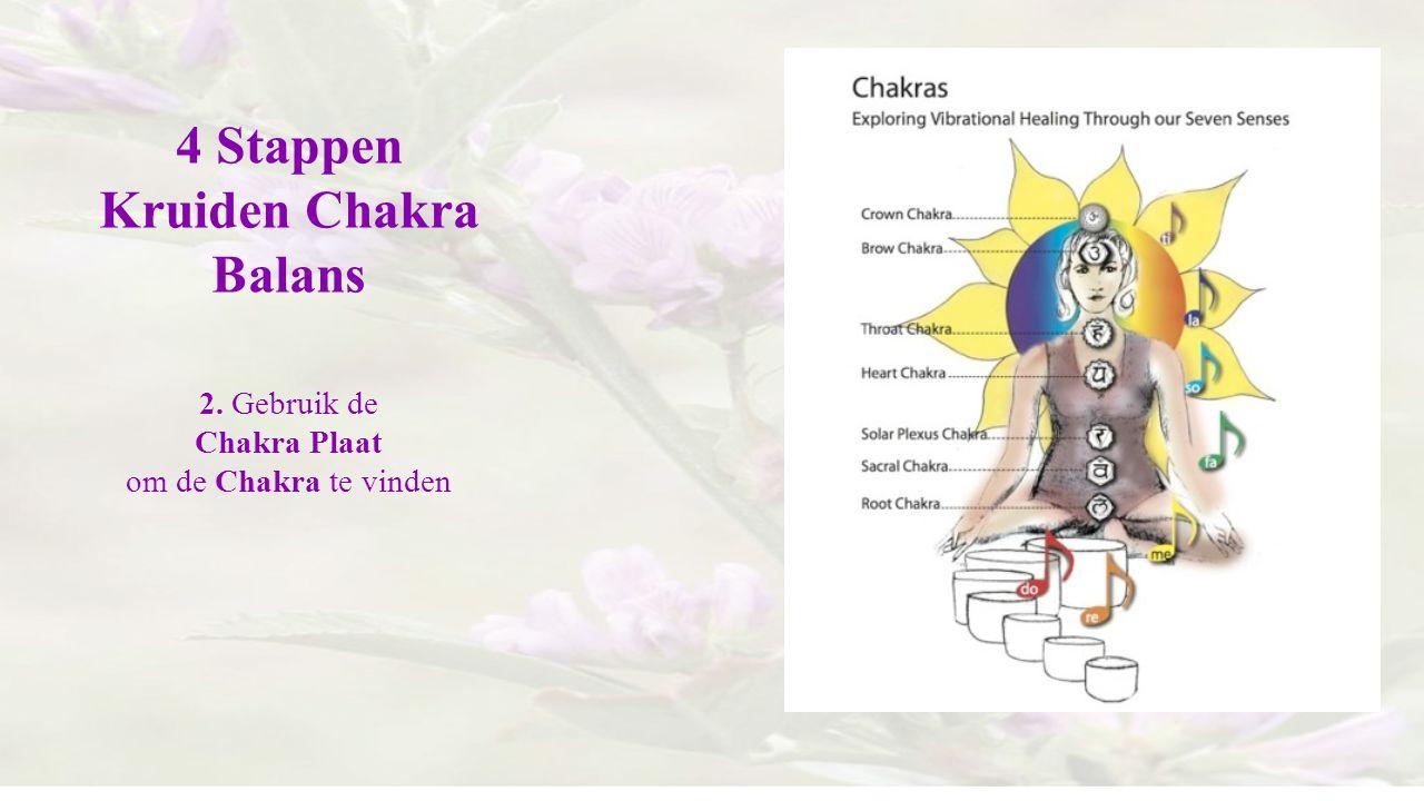 4 Stappen Kruiden Chakra Balans 2. Gebruik de Chakra Plaat om de Chakra te vinden