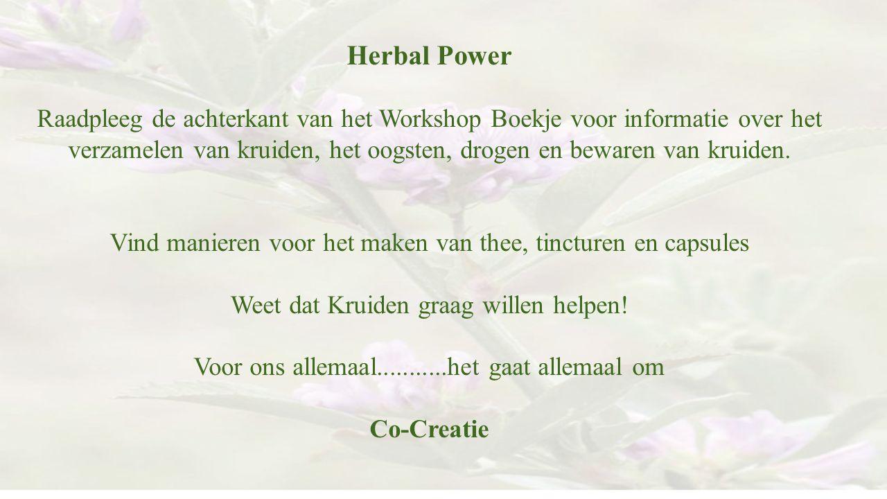 Herbal Power Raadpleeg de achterkant van het Workshop Boekje voor informatie over het verzamelen van kruiden, het oogsten, drogen en bewaren van kruid