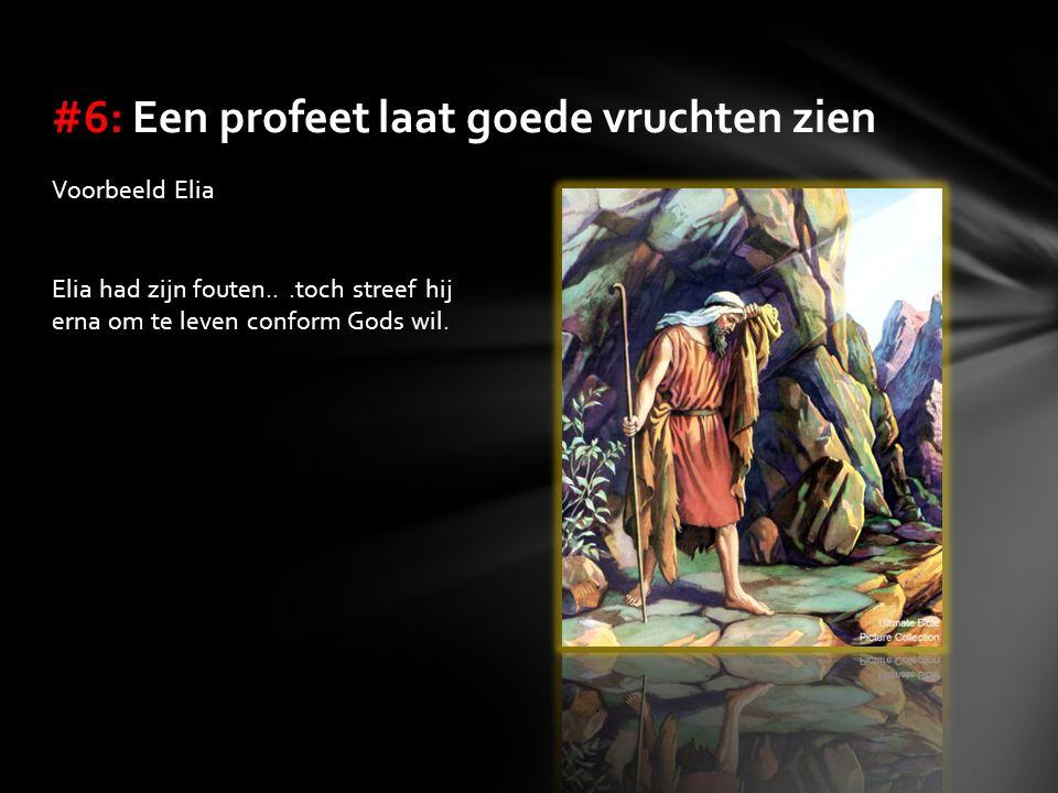 Voorbeeld Elia Elia had zijn fouten...toch streef hij erna om te leven conform Gods wil. #6: Een profeet laat goede vruchten zien