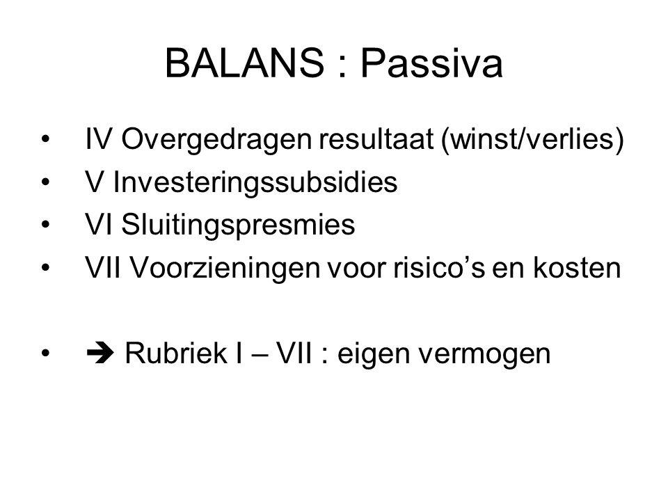 BALANS : Passiva IV Overgedragen resultaat (winst/verlies) V Investeringssubsidies VI Sluitingspresmies VII Voorzieningen voor risico's en kosten  Ru