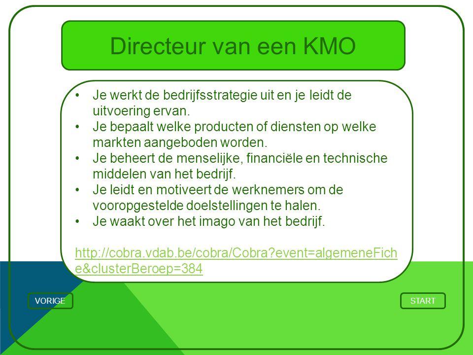 Directeur van een KMO STARTVORIGE Je werkt de bedrijfsstrategie uit en je leidt de uitvoering ervan. Je bepaalt welke producten of diensten op welke m